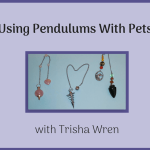 Using Pendulums With Pets