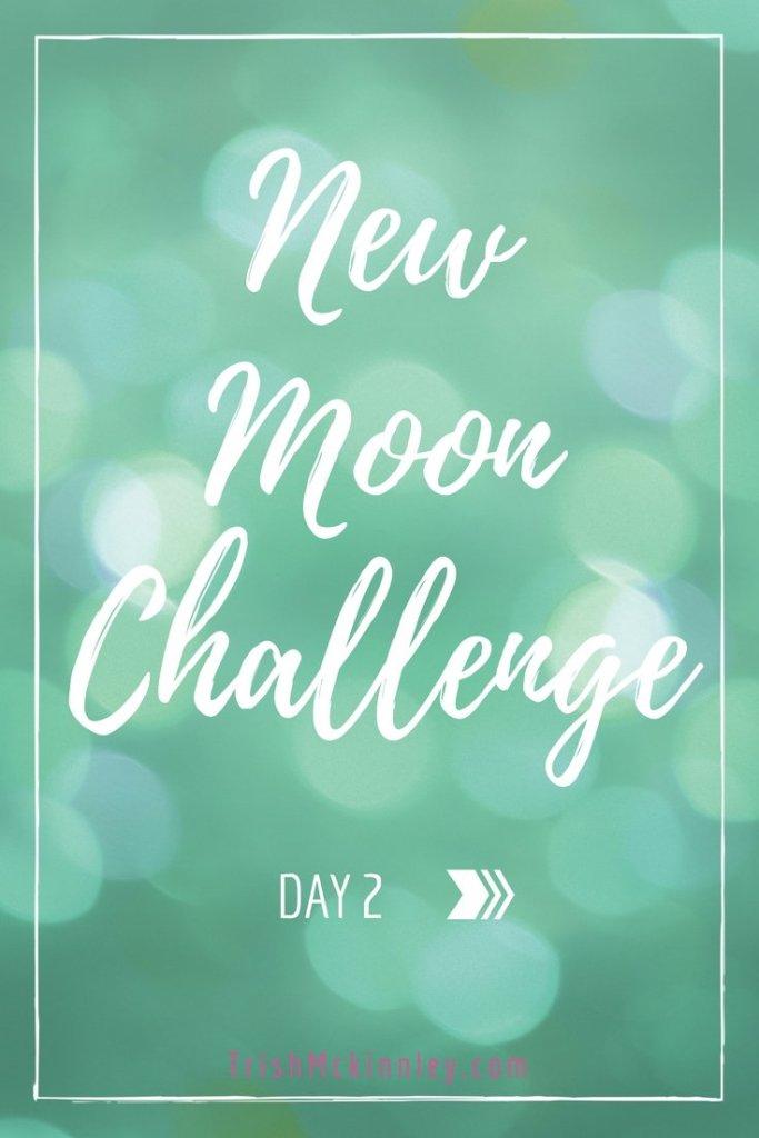 New Moon Challenge- Day 3
