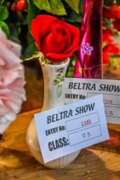 beltra show-17