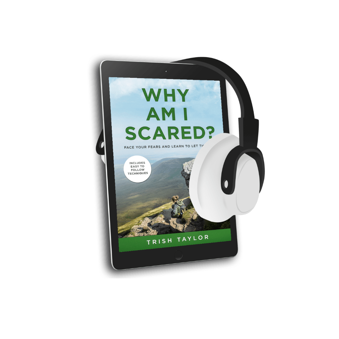 Audio book image of Why am I Scared book
