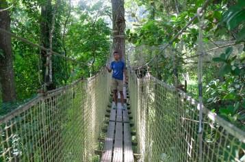 Le parcours suspendu du jardin de Balata en Martinique