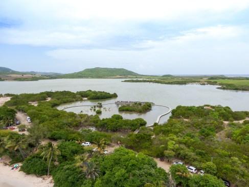 L'Étang des Salines en Martinique