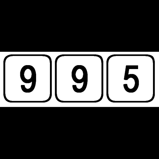 995 logo