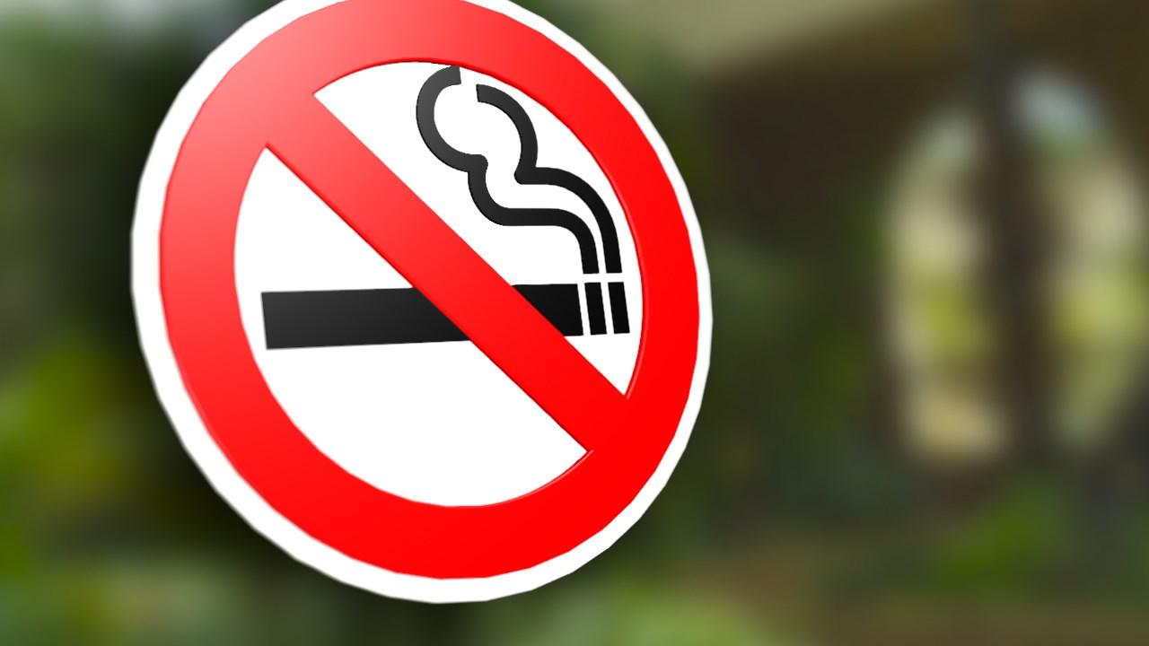 smoking ban_1463600790176.jpg