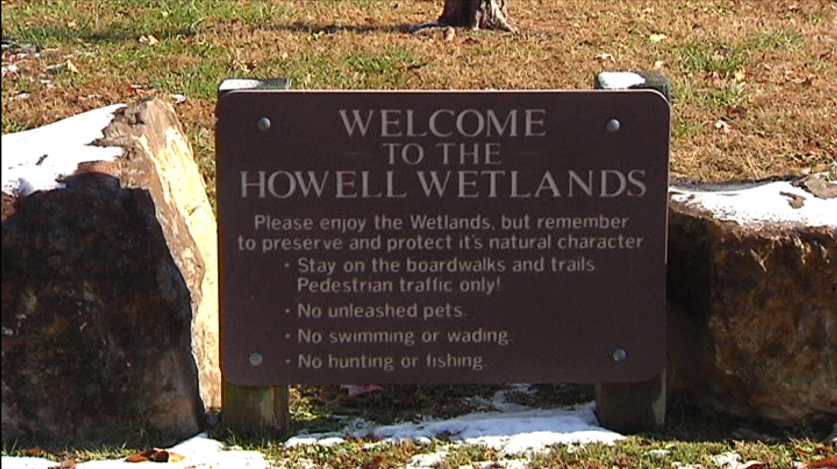 howell wetlands_1542399407651.JPG.jpg