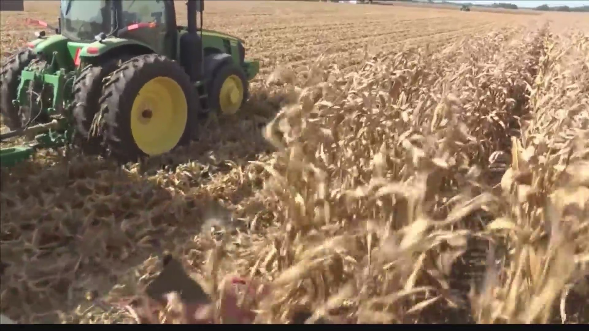 Number_of_farms_decreasing_in_Illinois_0_20190325223139
