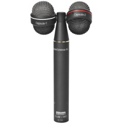 Sanken CUW-180 - double micro