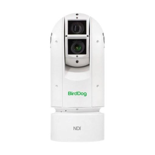 BirdDog Eyes A300 - caméra PTZ