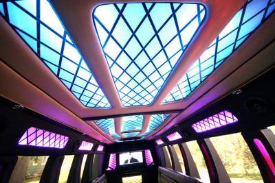 limo-coach-22-passenger-TT-44-04