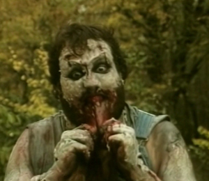 Image result for redneck zombies