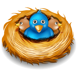Twitter Nest