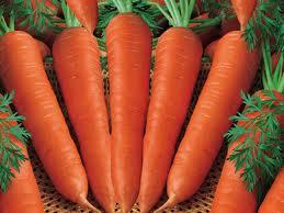củ cà rốt có giá trị dinh dưỡng rất cao