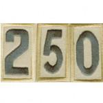 Group logo of Troop 250 All Members