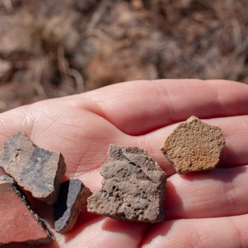 Some pottery shards, which were put back before we left the area.