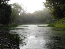 toyon-trail-portola-valley-016