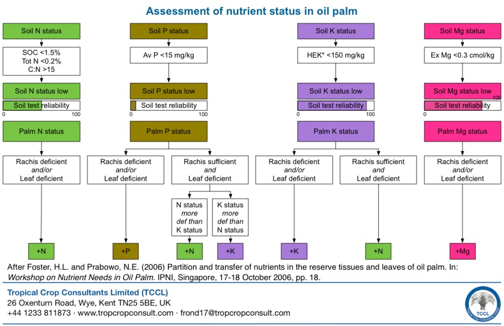 Interpretation of leaf and rachis analysis results - Assessment of nutrient status in oil palm
