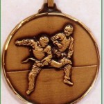 Martial Arts Medals