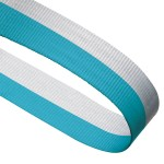 Light Blue / White Woven Medal Ribbons With Clip 1