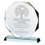 Octagon Shaped Jade Glass Awards Supplied In Presentation Box. Price Includes Engraving