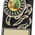 Black Plastic Plaques With Gold Trim Detail 1