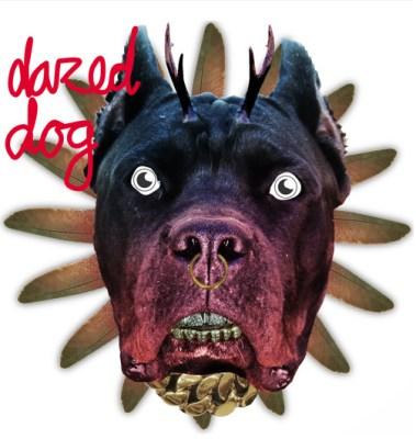 Dazed Dog