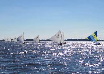 Fleet in Sun