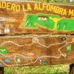 Sendero la alfombra magica Sierra del Escambray
