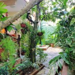 Accommodation for renting Abel y Yoli Vinales Cuba by tropicalcubanholiday.com
