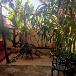 Accommodation of Vinales Abel y Yoli