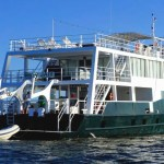 Diving Tour in Gardens of the Queen with Avalon III luxury yacht