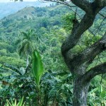 Hiking Tour El Nicho Cuba Vintage Vacation - tropicalcubanholiday.com