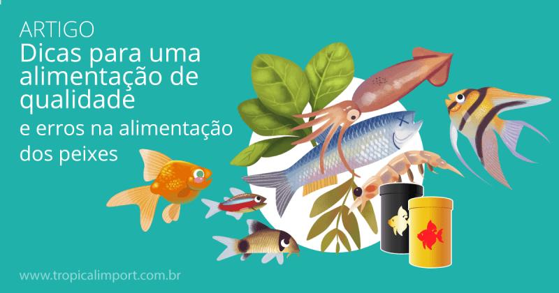 Dicas para a alimentação dos peixes ornamentais