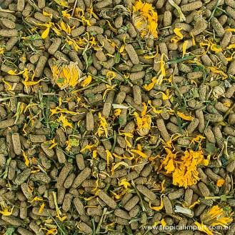 Alimentos liofilizados linha soft Reptiles herbivore
