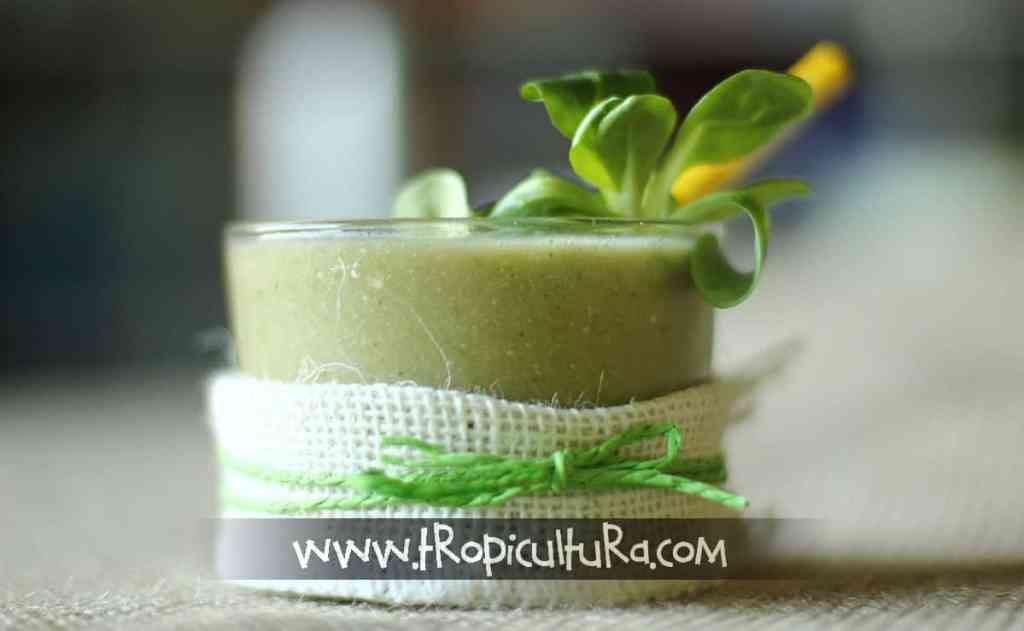 smoothie verde de mango ecológico 02