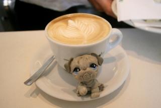 PAUSA-CAFÉ