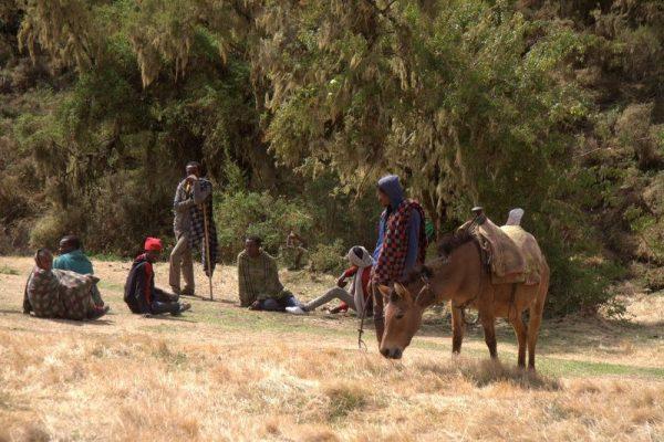 VENDEDORES DE SOUVENIRS EN EL PARQUE NACIONAL SIMIEN MOUNTAINS