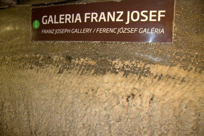 CARTEL DE LA GALERÍA FRANZ JOSEF