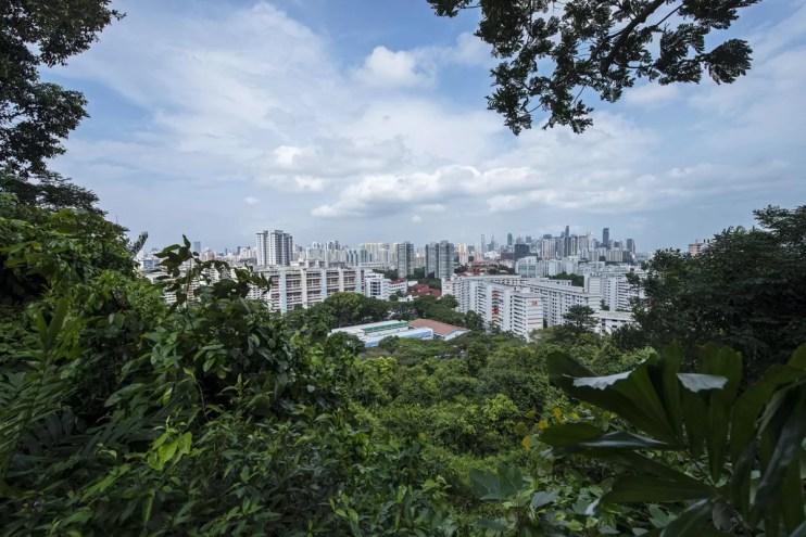 Singapore Blog-82