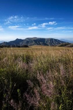 Wat te doen in Malawi: Zomba Plateau