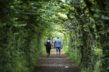 Groene wandelgang bij Theux