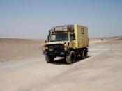 Moggy in de woestijn