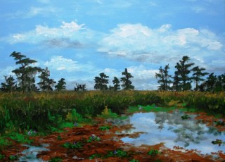 """Reflections on the Marsh"""