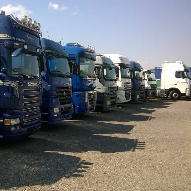 truck-team-boerner-flotte2