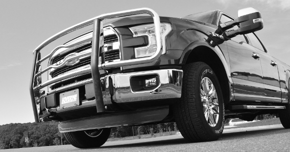 2015 Guard Brush Ram Dodge
