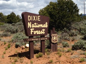 Hell's Backbone - Dixie National Forest