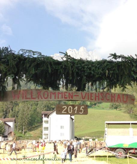 Willkommen Viehschau 2015