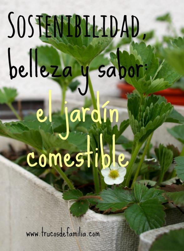 Sostenibilidad, belleza y sabor: el jardín comestible