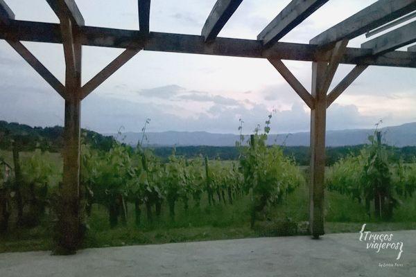 Suklje-winery-vineyards-Slovenia