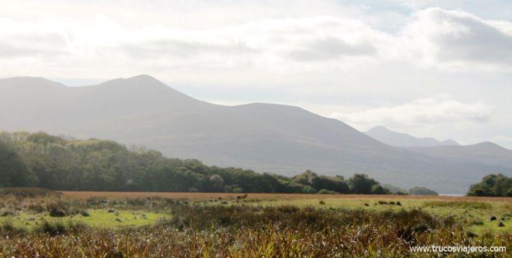 Parque nacional de Killarney Irlanda condado de Kerry