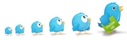 12 formules pour augmenter son trafic grâce à Twitter